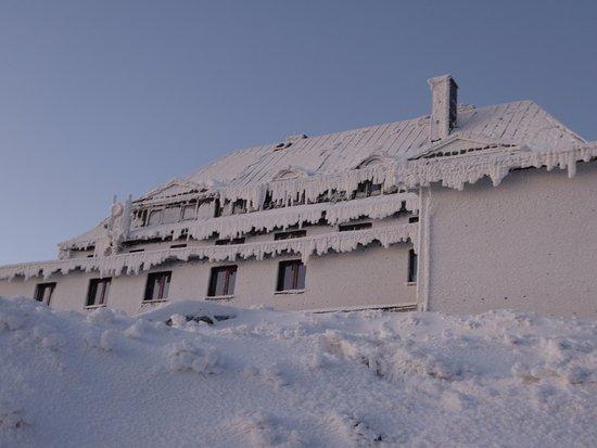 Szrenica Hostel