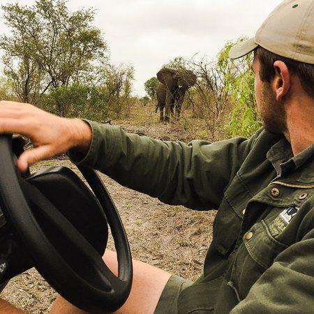 Umkumbe Safari Lodge: photo4.jpg