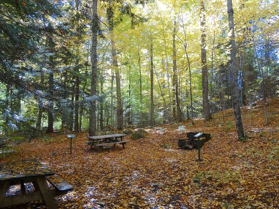 Gifford Woods State Park : Picnic Area near Park Headquarters & Interpretive Trail