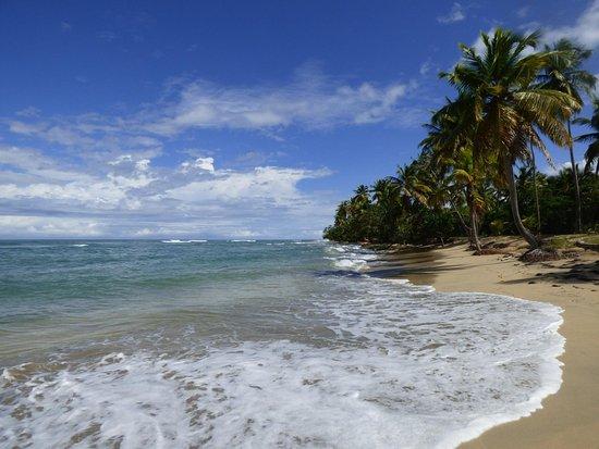 Miches, สาธารณรัฐโดมินิกัน: Playa Esmeralda