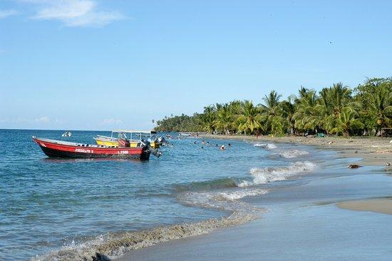 Gandoca - Manzanillo Wildlife Refuge: La Playa de Manzanillo en el pueblo con el refugio al fondo...
