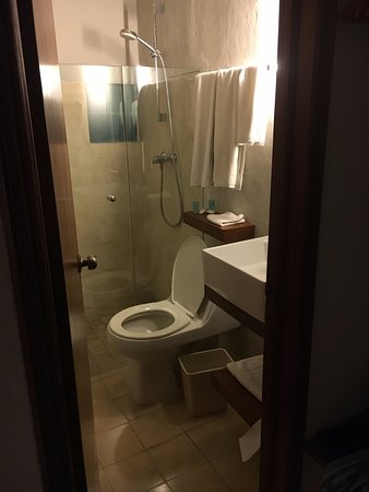 Caribe Hotel: small bathroom