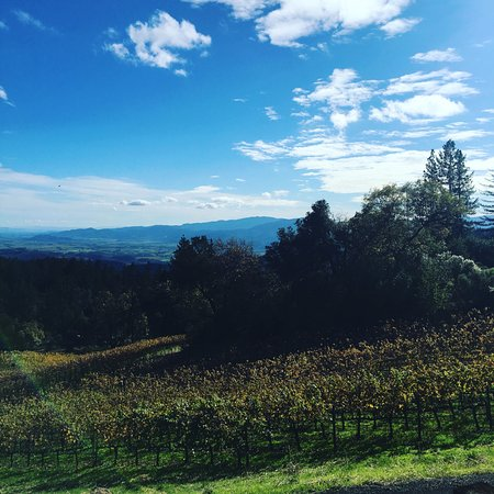 Angwin, Kalifornien: over looking the valley