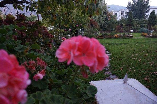 Mecina Fondales, Ισπανία: Jardines