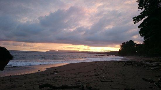 Tambor, Costa Rica: DSC_0133_1_large.jpg