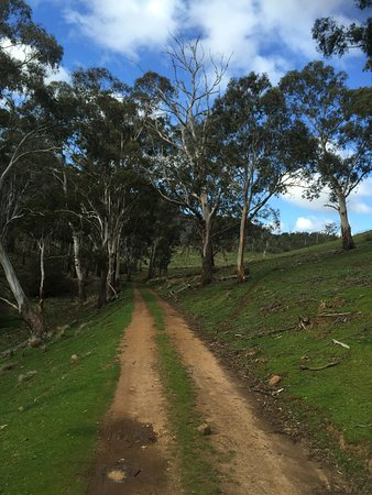 New Norfolk, Australien: Lots of beautiful walks to explore