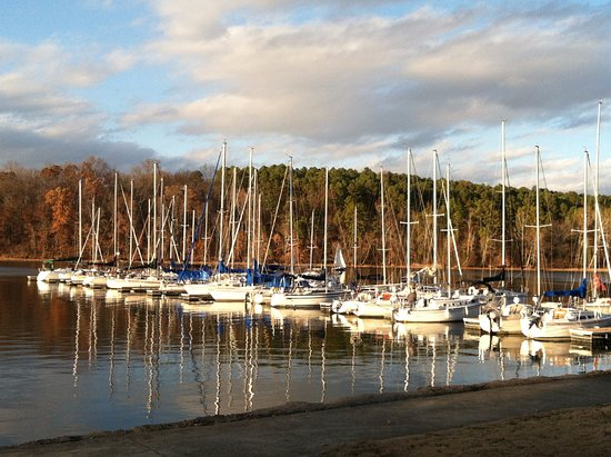 Rogersville, อลาบาม่า: The marina at Joe Wheeler State Park