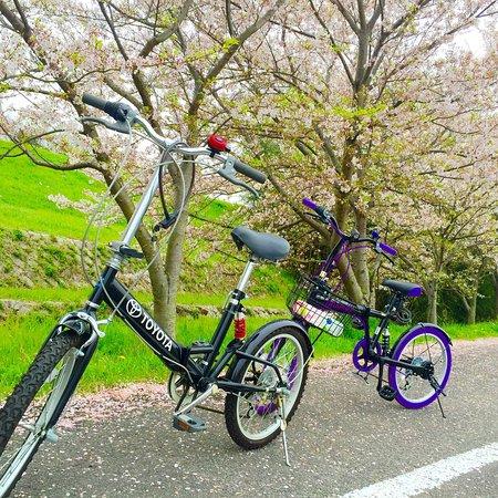 Yanagawase Park