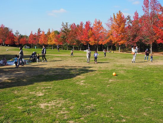 Mikiyama Forest Park