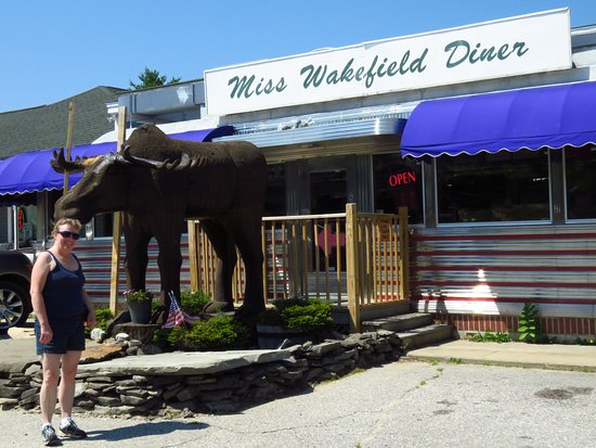 East Wakefield, Nueva Hampshire: The front view is pretty good, but sitting behind the moose inside is quite a different view!