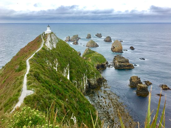 Nugget View & Kaka Point Motels: Don't let this stop you from viewing a spectacular sight