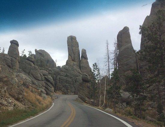 Custer State Park: photo1.jpg