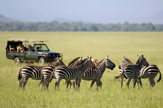 Vacations Of Africa