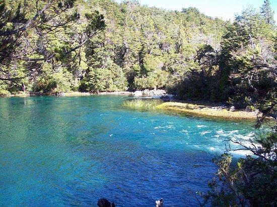 Bosque De Alerces Milenarios: El color del agua !!!