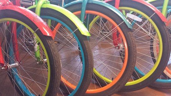Coconut Coasters Beach Bike Rentals