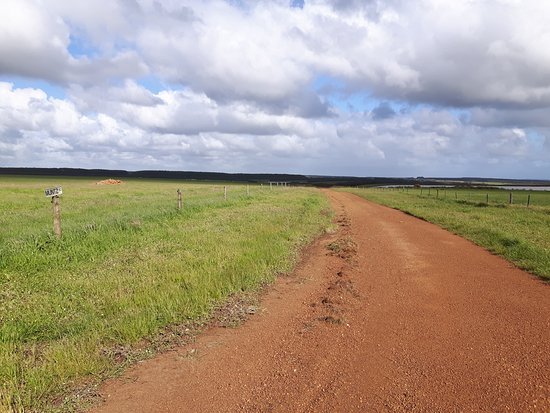 Flinders Chase Farm Stay: 20161113_171307_large.jpg