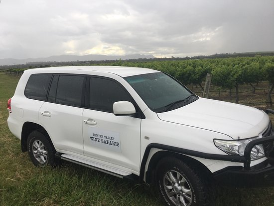 Hunter Valley Wine Safaris Tours & Valley Transfers: Hunter Valley Wine Safaris Tours