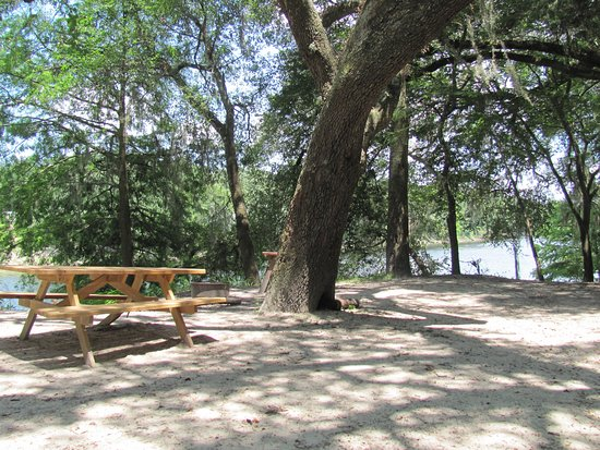 Suwannee River Rendezvous Resort & Campground: Tent site