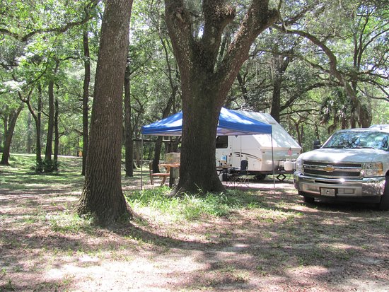 Suwannee River Rendezvous Resort & Campground: Water and Electric site on the lower campground