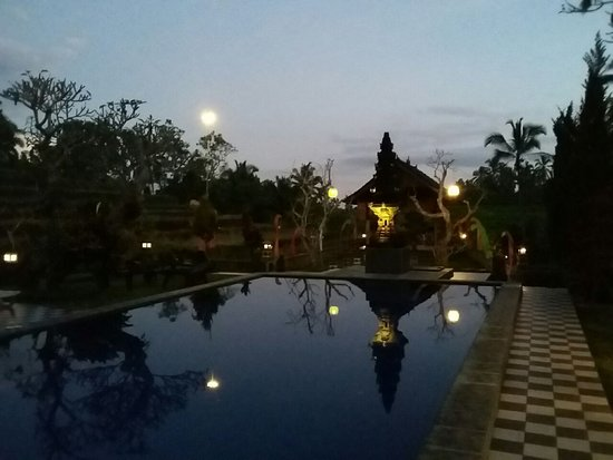 Pupuan, Indonesia: A night time swim