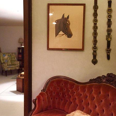 The DeWitt Oak Hill Interiors:
