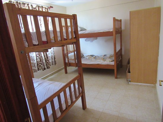 Room For Four People In Bunk Beds Picture Of Bondo Travellers