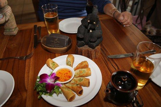 Βόρειο Μαϊάμι, Φλόριντα: North MIAMI Beach. Restaurant Oishi Thai. Vegetable springrolls (Nems aux légumes)
