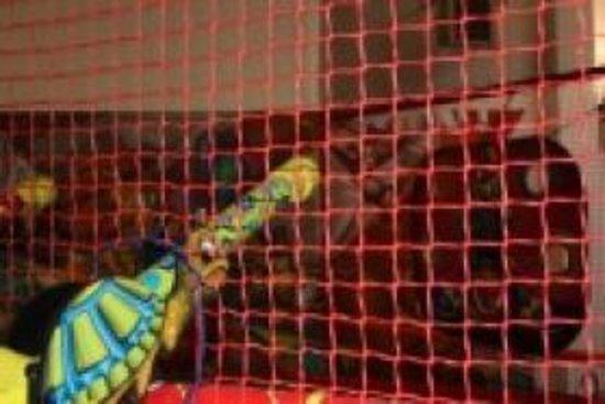 Maurepas foto 39 s getoonde afbeeldingen van maurepas for Parc de jeux yvelines