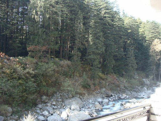 Manali, Ινδία: View from the balcony of our room at our hotel, River Bank Inn