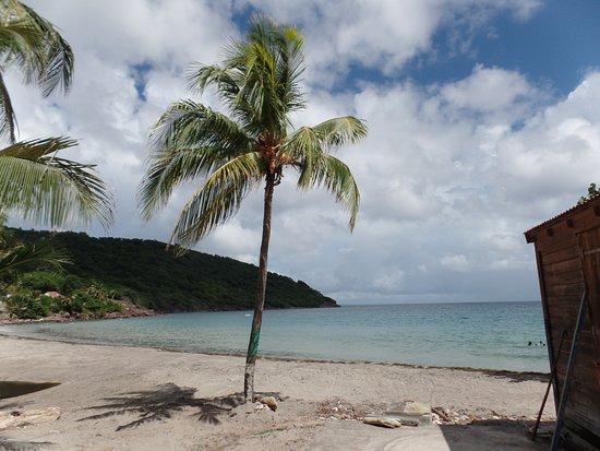 Iles des Saintes, กวาเดอลูป: la petite plage