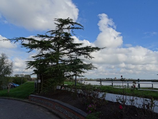 Reedham, UK: View from table during Saturday lunch