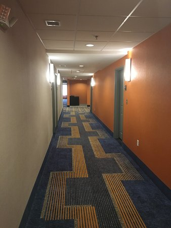 Colored Rooms celan and well colored rooms - picture of homewood suites