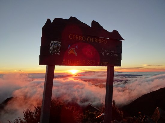 Chirripo National Park : DSC01077_large.jpg