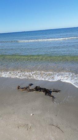 Jaeren: Sola Beach