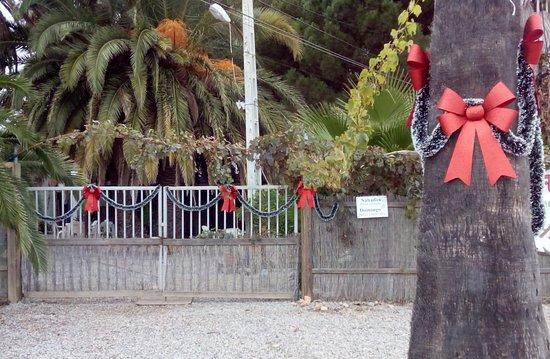 Torreblanca, สเปน: CAÑAS Y BARRO EN NAVIDAD