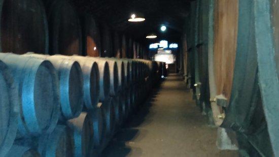 Azeitao, Portugal: Vista da Adega