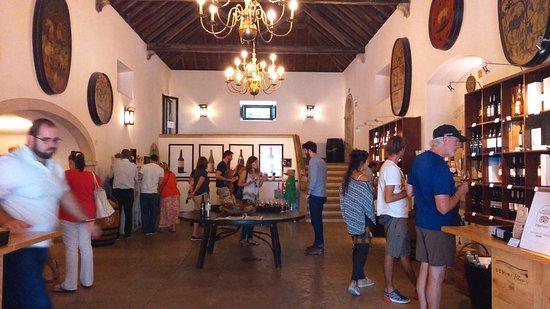 Azeitao, Portugal: Loja de Vinhos