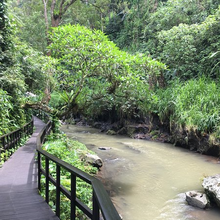 烏布瑪雅度假村照片