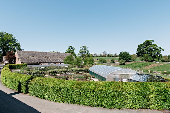 Askham, UK: view of the cafe and kitchen gardens