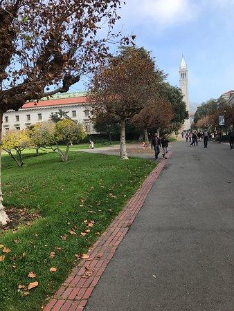 写真カリフォルニア大学バークレー校枚