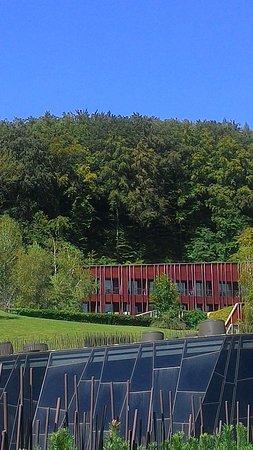 Hotel Sotelia Photo
