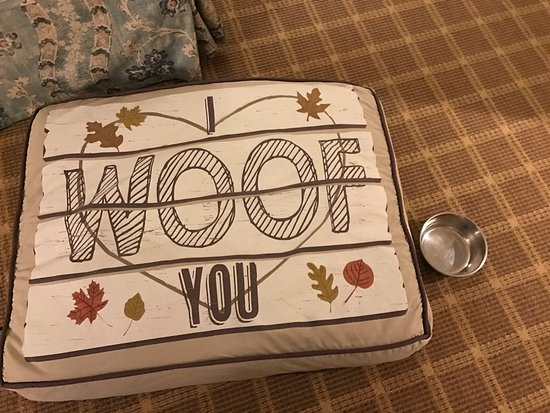 Manchester, VT: Doggie Bed and bowl delivered to your room.