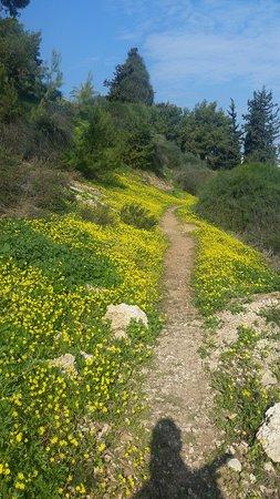 Tel Giborim Youth Park