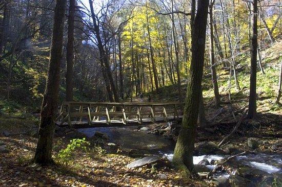 Warren, نيو جيرسي: Typical hiking trail and bridge