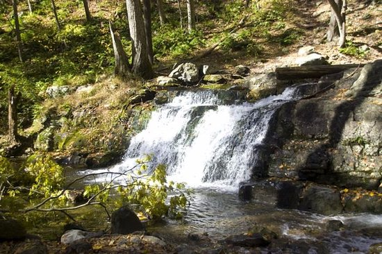 Warren, NJ: Waterfall on the mountainside