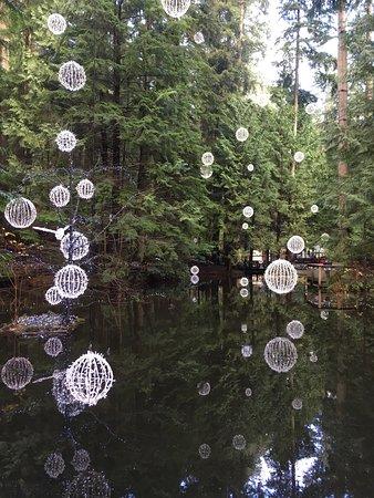 نورث فانكوفر, كندا: photo0.jpg