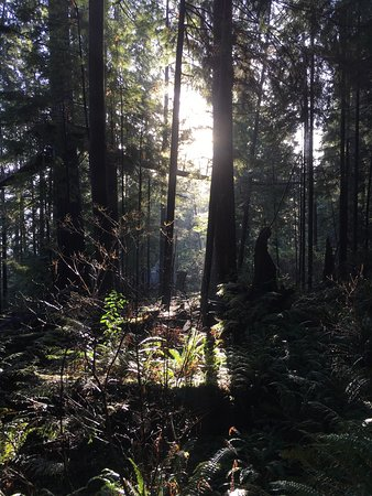نورث فانكوفر, كندا: photo2.jpg