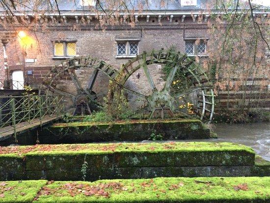 Heverlee, Belgien: photo3.jpg