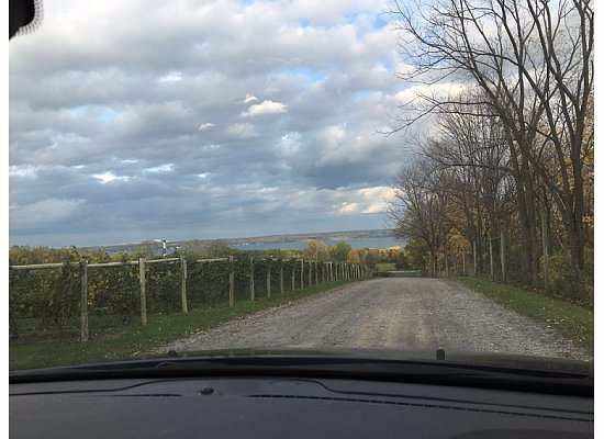 Penn Yan, NY: View from the driveway from Red Tail Ridge toward the lake