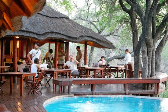 Imbali Safari Lodge: in attesa del caffe'
